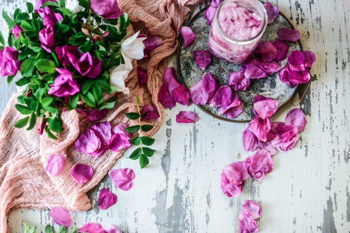 wild nantucket beach roses