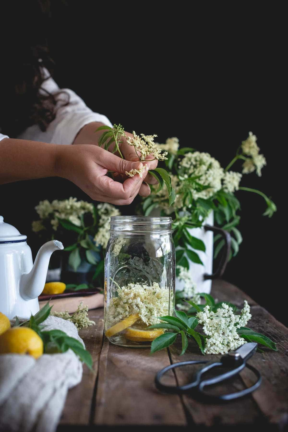 Elderflower Syrup | Fare Isle