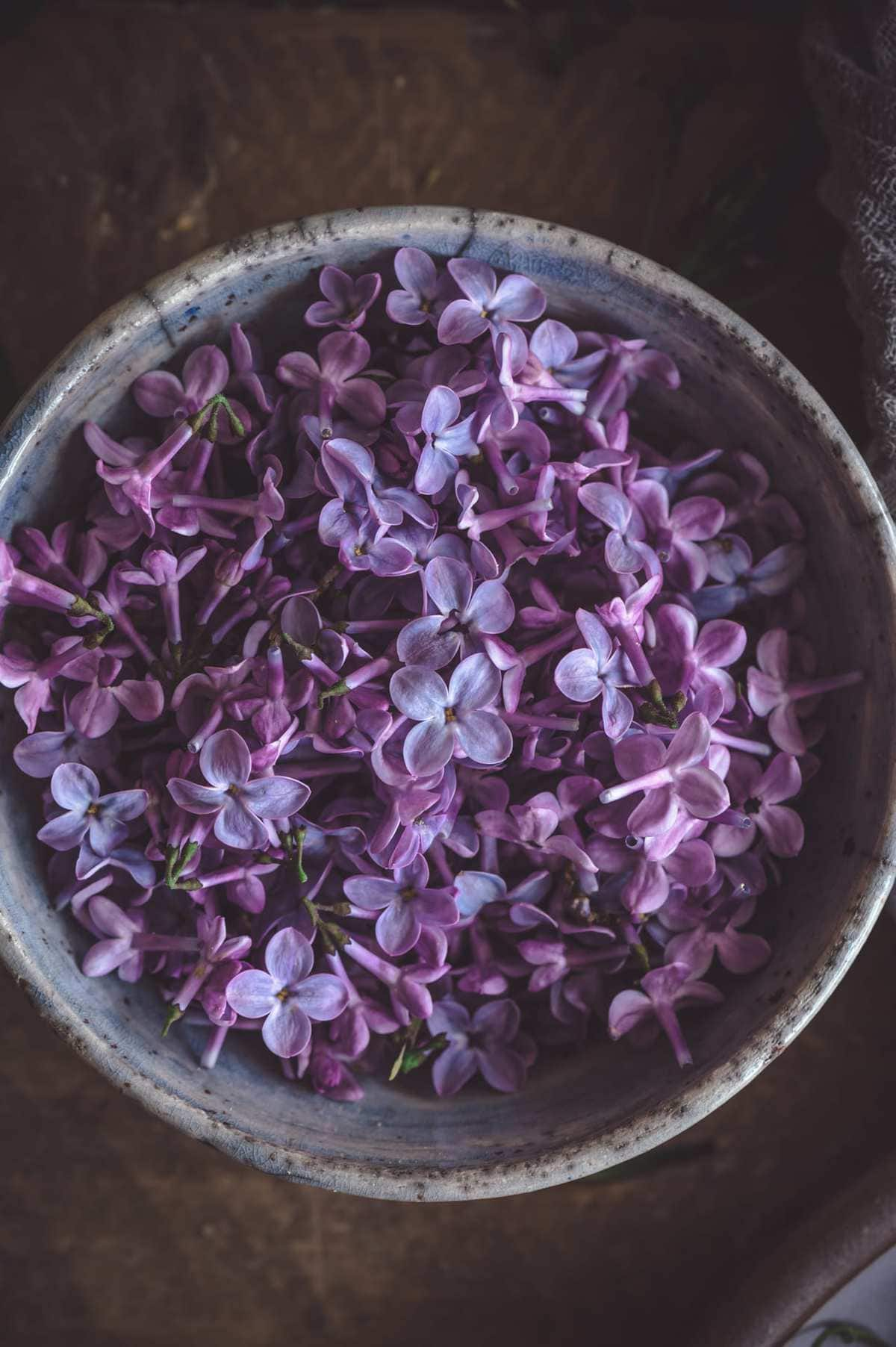 lilac flowers in bowl