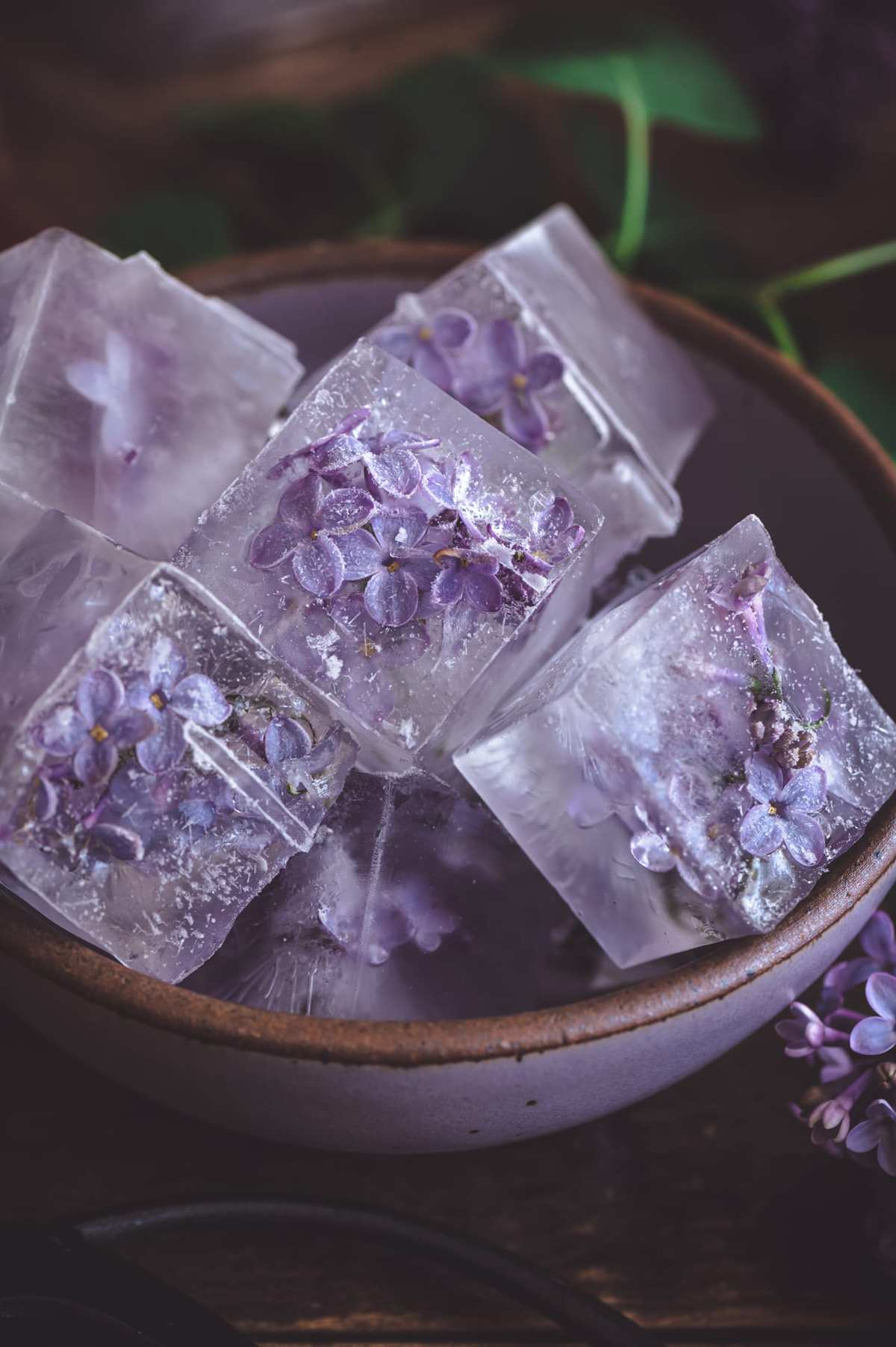 lilac ice cubes